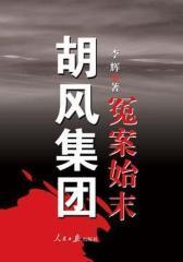 胡风集团冤案始末(试读本)