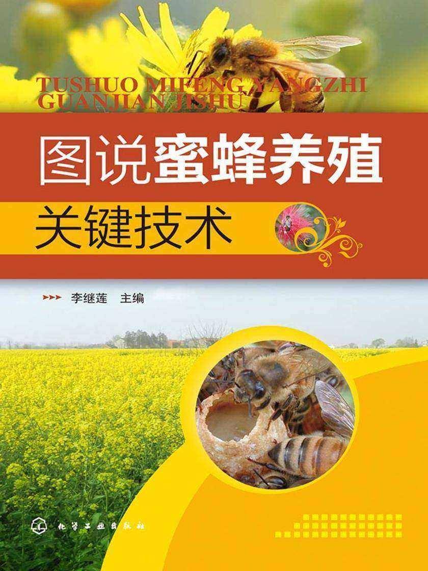 图说蜜蜂养殖关键技术