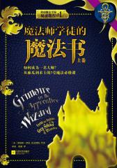 魔法师学徒的魔法书:如何成为一名大师?从麻瓜到术士的7堂魔法必修课(上卷)
