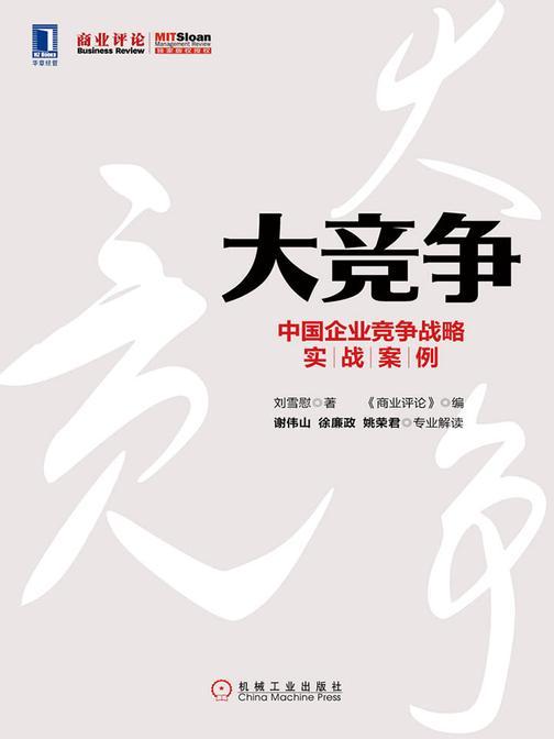 大竞争:中国企业竞争战略实战案例