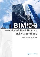 BIM结构:Autodesk Revit Structure在土木工程中的应用