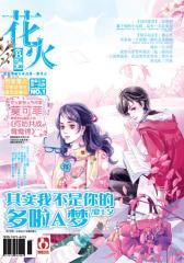 花火B-2009-11期(电子杂志)