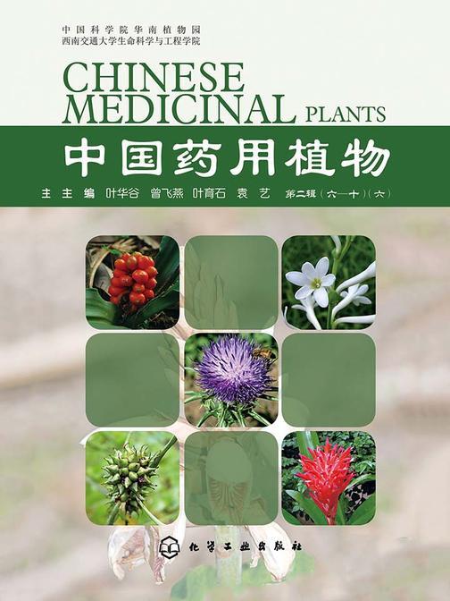 中国药用植物(七)