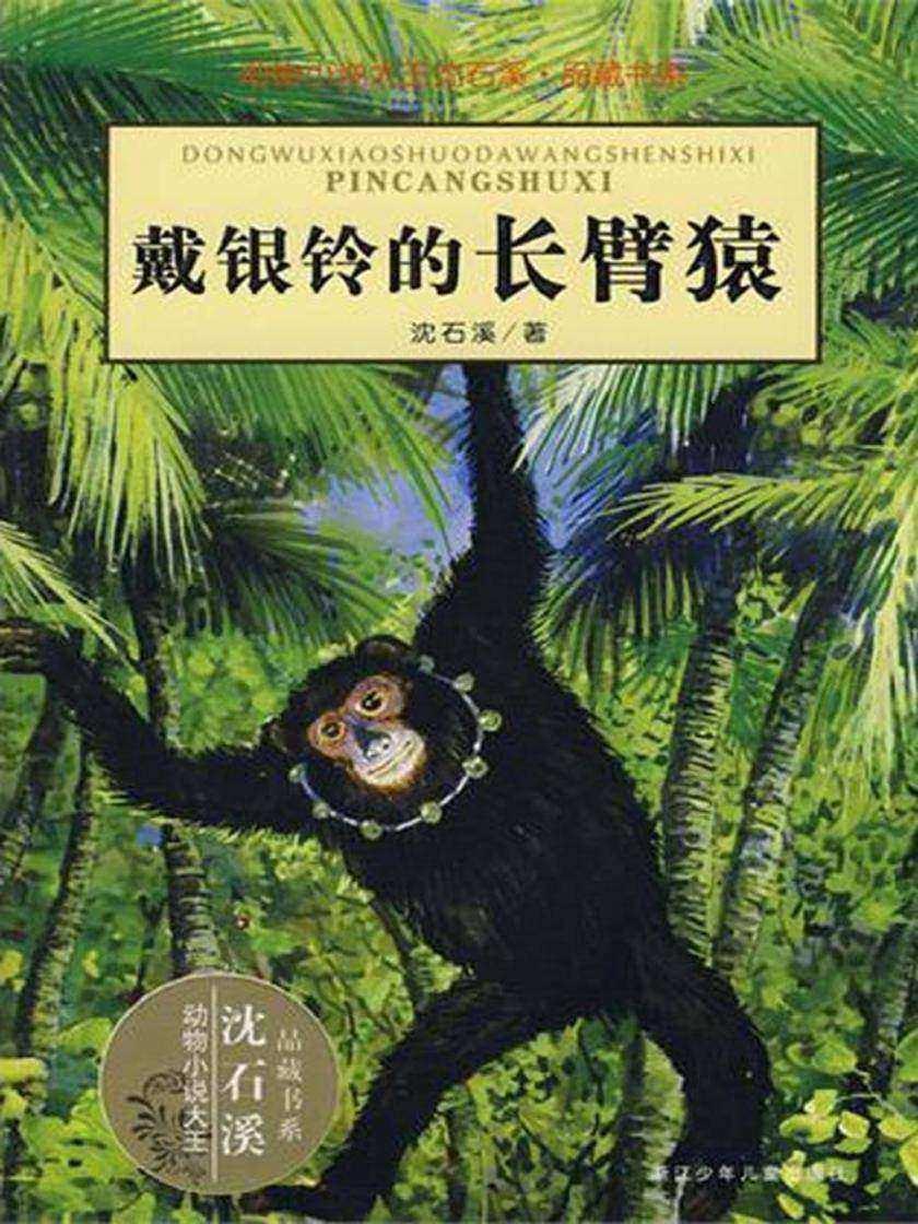 戴银铃的长臂猿(动物小说大王沈石溪·品藏书系)