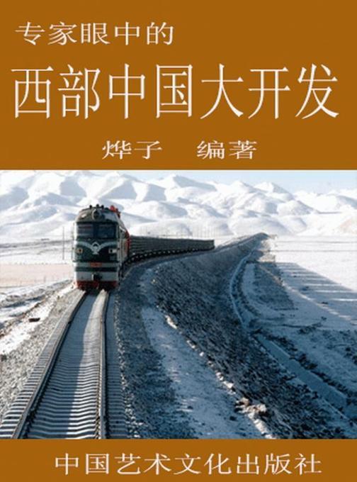 专家眼中的西部中国大开发