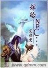 嫁给NPC
