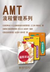 AMT流程管理系列(套装共三册)