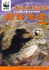 藏獒渡魂(沈石溪动物传奇故事)