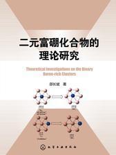 二元富硼化合物的理论研究