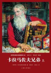 世界名著名译文库·陀思妥耶夫斯基集(04):卡拉马佐夫兄弟(套装共2册)