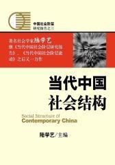 当代中国社会结构