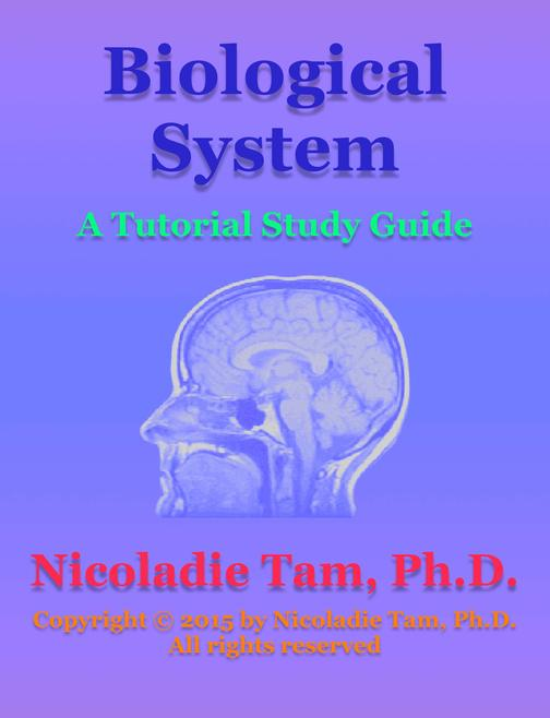 Biological System: A Tutorial Study Guide
