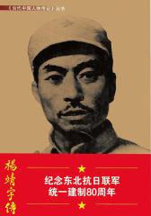 杨靖宇传:《当代中国人物传记》丛书