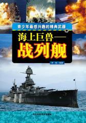 海上巨兽:战列舰