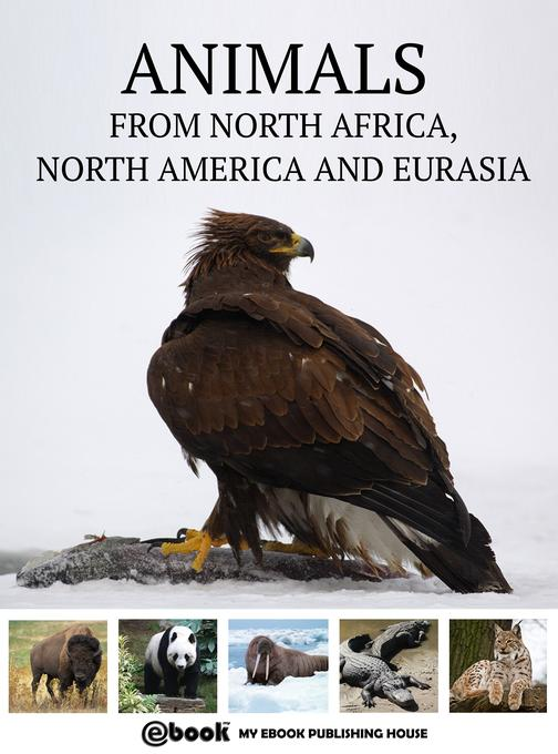 Animals from North Africa, North America and Eurasia