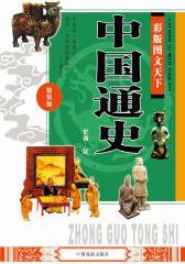 彩版图文天下·中国通史(史前—汉)
