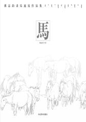 马——孙志钧速写作品(仅适用PC阅读)