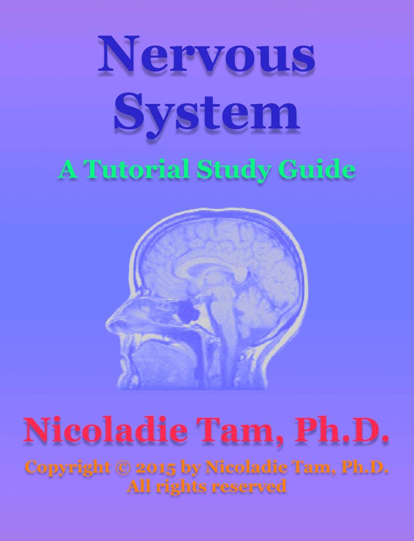 Nervous System: A Tutorial Study Guide