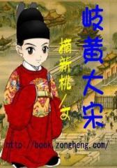 岐黄大宋(2)