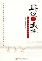 身边的武林:内家拳修炼体悟笔记(试读本)
