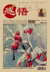 感悟 月刊 2012年02期(电子杂志)(仅适用PC阅读)