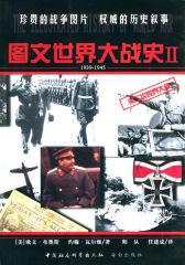 图文世界大战史Ⅱ(仅适用PC阅读)