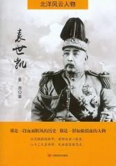 袁世凯(北洋风云人物)