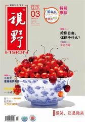 视野 月刊 2012年03期(电子杂志)(仅适用PC阅读)