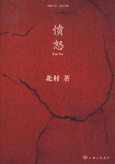 北村文集:愤怒(试读本)