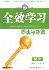 全效学习系列丛书:数学·人教版·八年级下册(仅适用PC阅读)