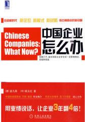 中国企业怎么办(试读本)