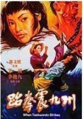 跆拳震九州 国语(影视)