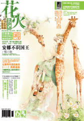 花火B-2012-12期(电子杂志)