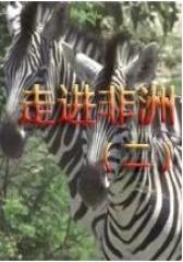 走进非洲(二)(影视)