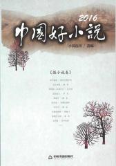 2016中国好小说(微小说卷)