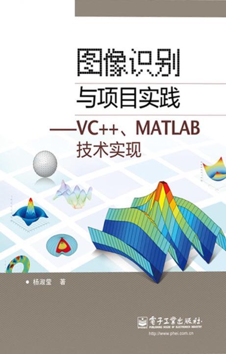 图像识别与项目实践:VC++、MATLAB技术实现
