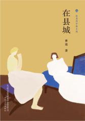 布老虎中篇小说·在县城