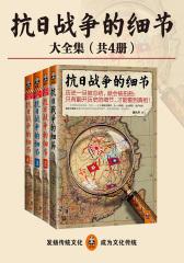 抗日战争的细节全集(套装共4册)