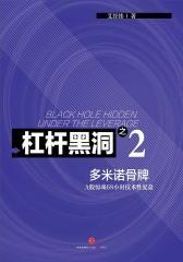 杠杆黑洞2——A股惊魂68小时技术性复盘:多米诺骨牌(电子杂志)