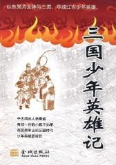 三国少年英雄记(仅适用PC阅读)