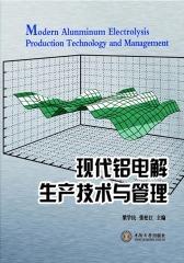 现代铝电解生产技术与管理(仅适用PC阅读)