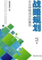 战略规划:企业持续成功的基因