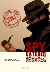 我的反间谍生涯(试读本)