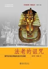 法老的诅咒——探寻古埃及神秘的巫术与宗教