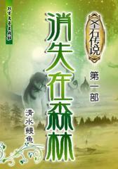 圣石传说  :消失在森林