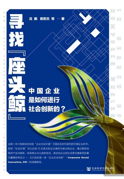 """寻找""""座头鲸"""":中国企业是如何进行社会创新的?"""