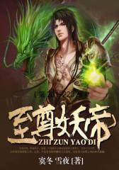 至尊妖帝(第201-220章)