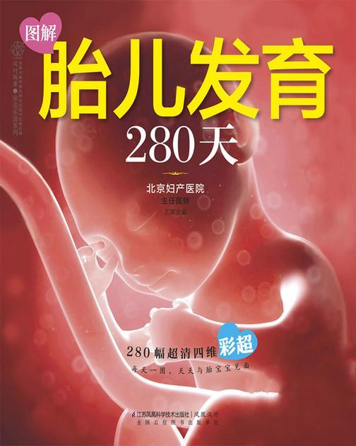 图解胎儿发育280天