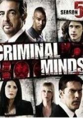 犯罪心理 第五季(影视)