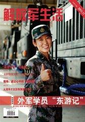 解放军生活 月刊 2011年11期(电子杂志)(仅适用PC阅读)